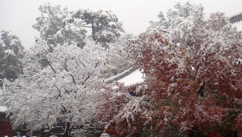 Xiangshan_snow